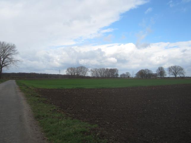 Blick über das hessische Ried (Bild: Klaus Dapp)