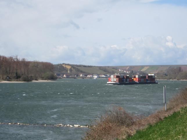 Blick auf den Rhein (Bild: Klaus Dapp)