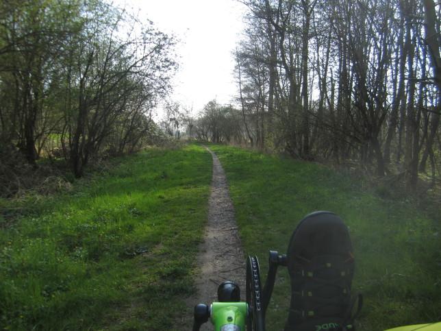 Radroute zwischen Griesheim und Trebur (Bild: Klaus Dapp)