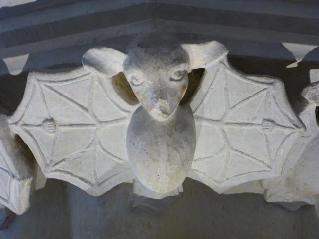 Fledermaus im Kreuzgang der Kathetrale in Tours (Bild: Klaus Dapp)