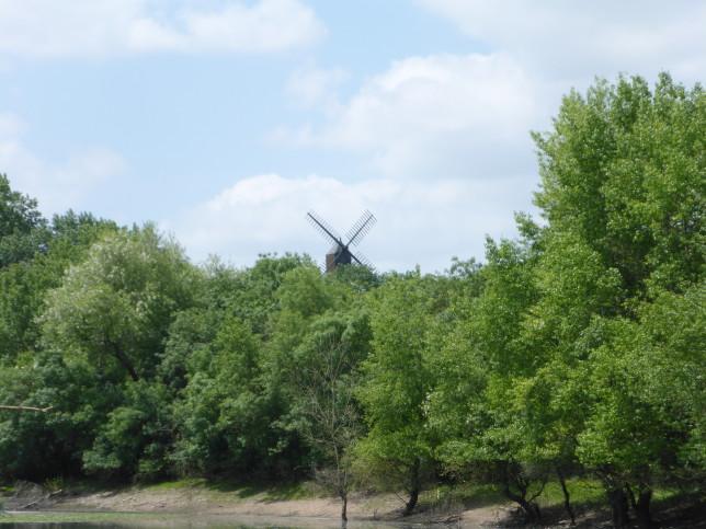 Mühle in Savennières (Bild: Klaus Dapp)
