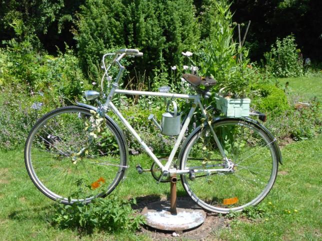 Fahrrad im Kurpark in Bad Salzhausen (Bild: Klaus Dapp)