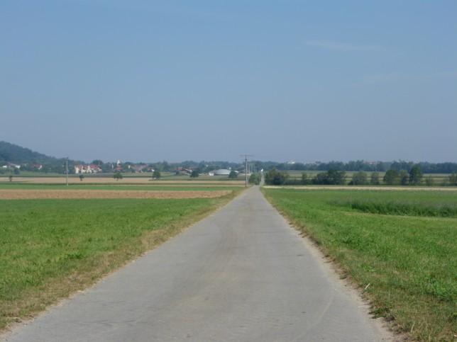 Blick Richtung Wilhelmsdorf (Bild: Klaus Dapp)