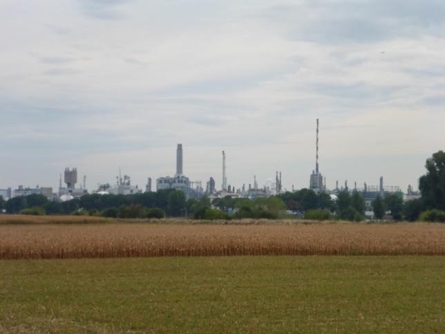 Blick auf das Firmengelände von BASF in Ludwigshafen (Bild: Klaus Dapp)