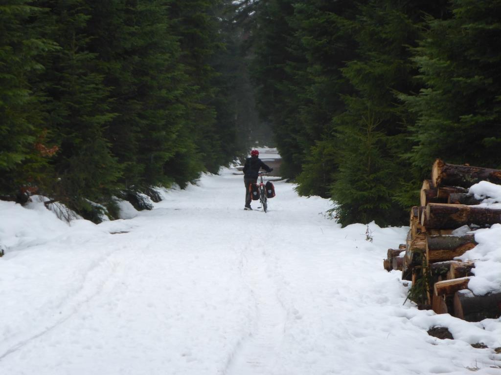 Schieben im Schnee (Bild: Klaus Dapp)