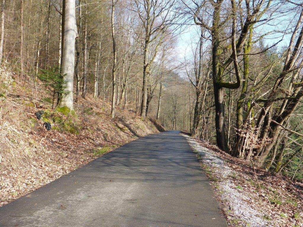 Enz-Radweg (Bild: Klaus Dapp)