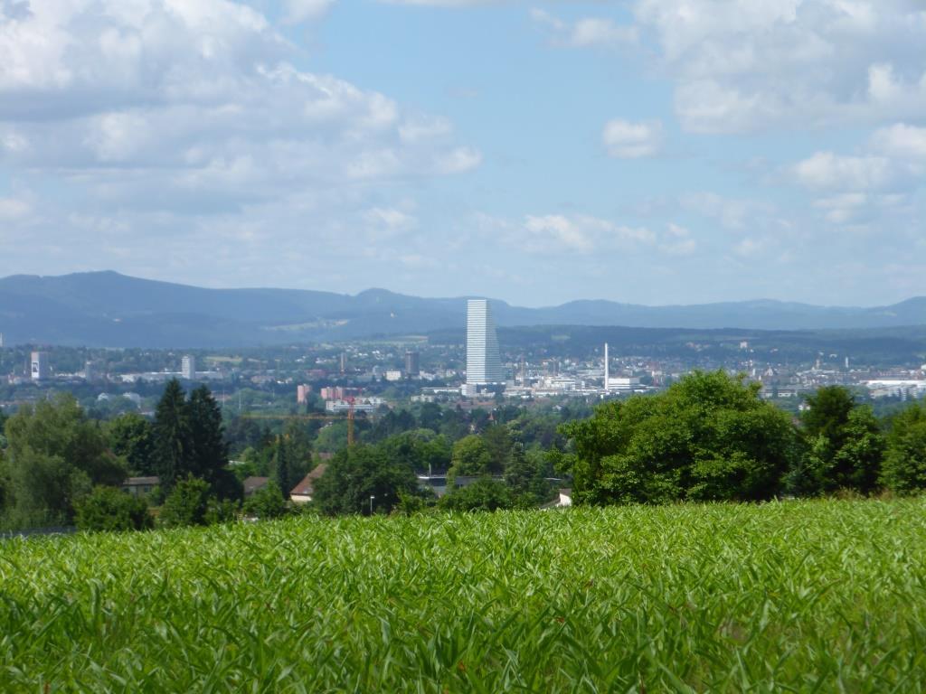 Bilck auf Basel (Bild: Klaus Dapp)