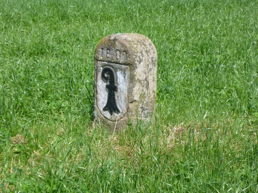 """Basler Wappen auf einem Grenzstein an der """"Eisernen Hand"""" (Bild: Klaus Dapp)"""