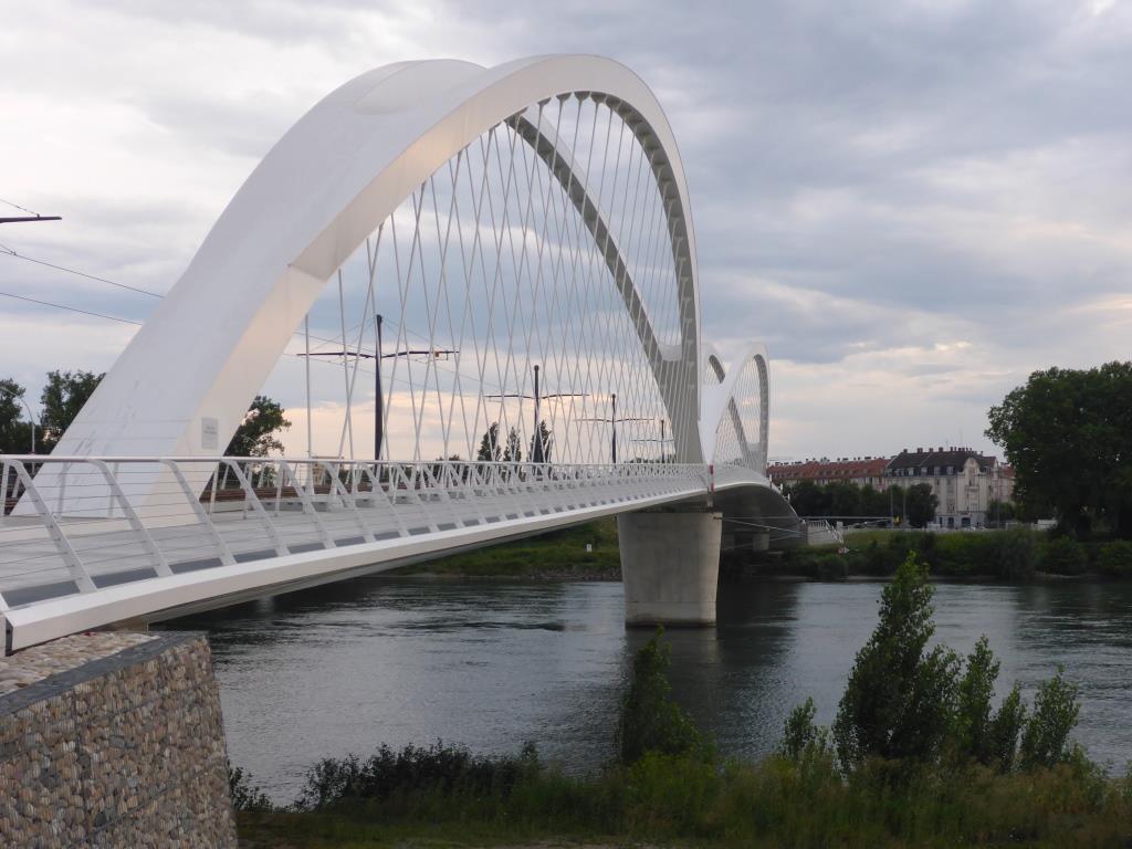 Neue Straßenbahnbrücke zwischen Kehl und Freiburg mit breiten Rad- und Fußweg (Bild: Klaus Dapp)