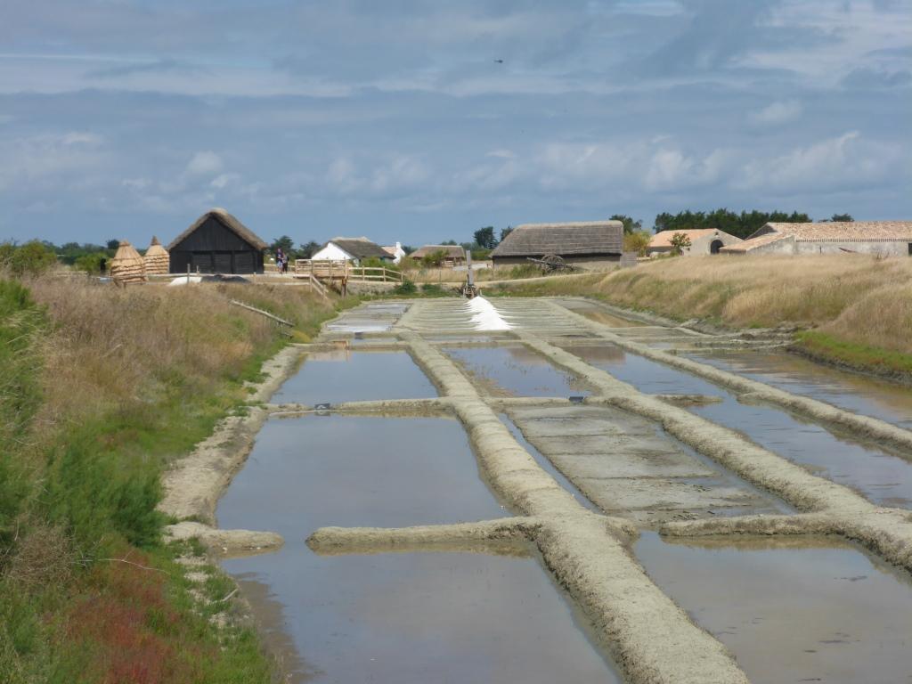 Salzgewinnung bei La Barre-de-Monts (Bild: Klaus Dapp)