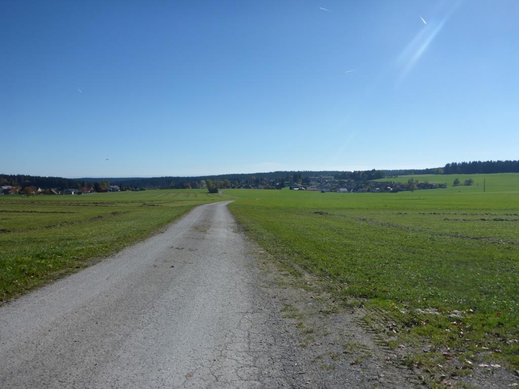 Freifläche bei Besenfeld im Schwarzwald (Bild: Klaus Dapp)