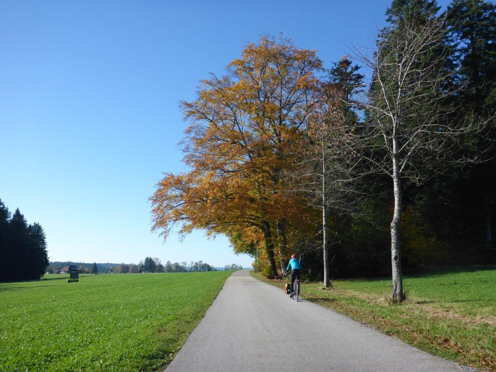 Herbstlicher Feldrand oberhalb des Kinzigtals (Bild: Klaus Dapp)