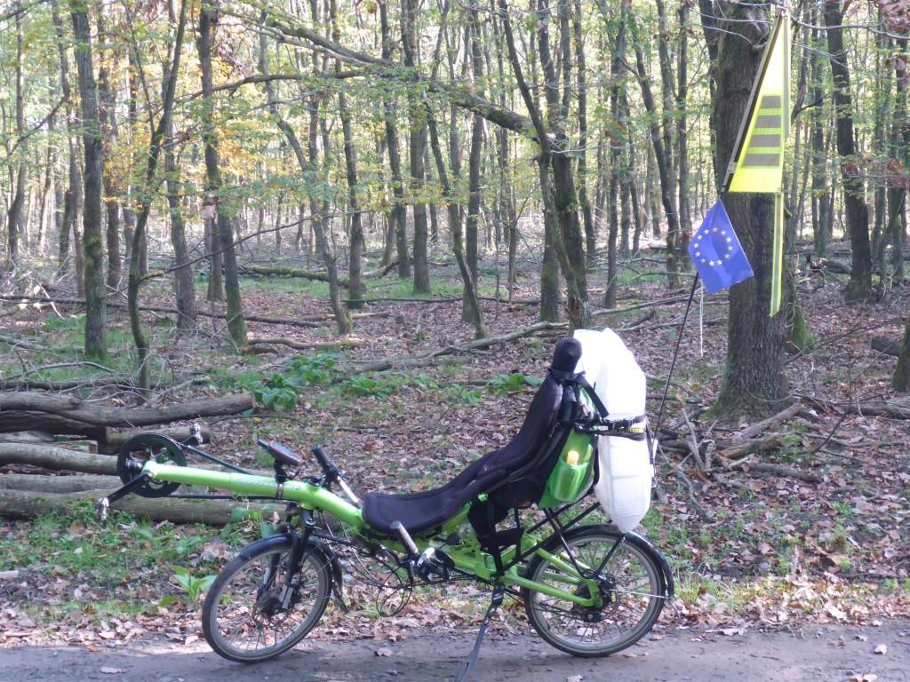 Gepäckträgertransport auf dem Grasshopper im Frankfurter Stadtwald (Bild: Klaus Dapp)