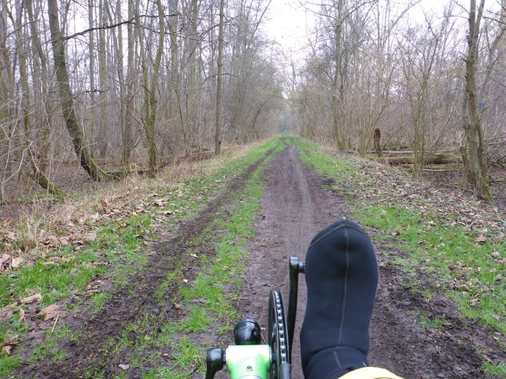 Aufgeweichter Waldweg bei Griesheim (Bild: Klaus Dapp)