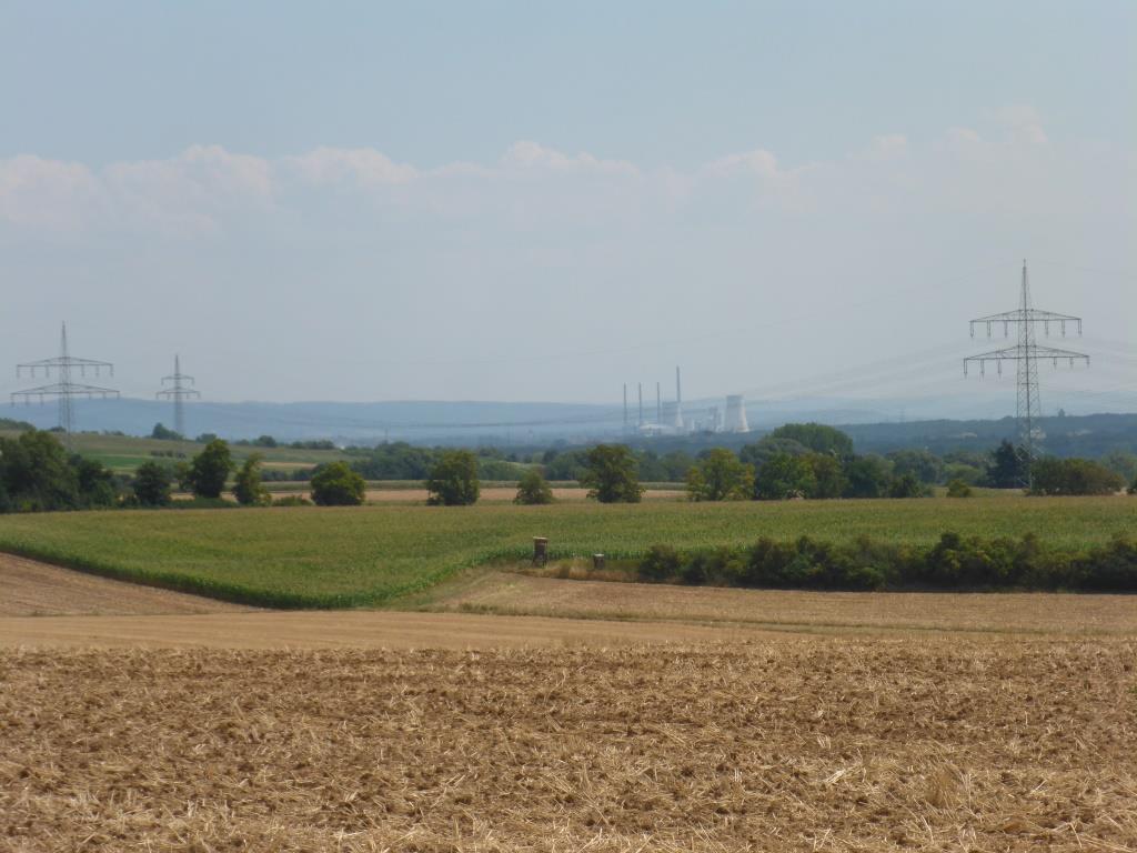 Blick zum Kohlekraftwerk Staudinger (Bild: Klaus Dapp)