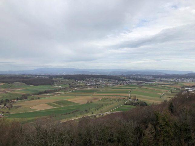 Blick Richtung Schwarzwald von der Ruine Landskron (Bild: Klaus Dapp)