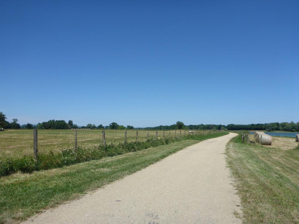 Radweg entlang der Sâone (Bild: Klaus Dapp)