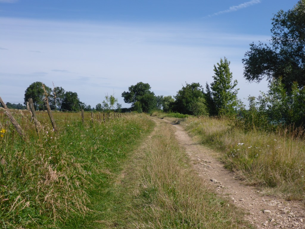 Inoffizieller Weg entlang der Saône (Bild: Klaus Dapp)