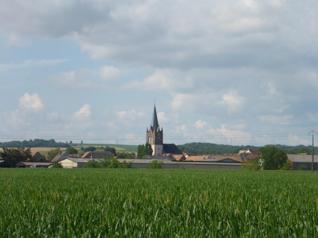 Blick vom Rhein-Marne-Kanal nach Ingenheim (Bild: Klaus Dapp)