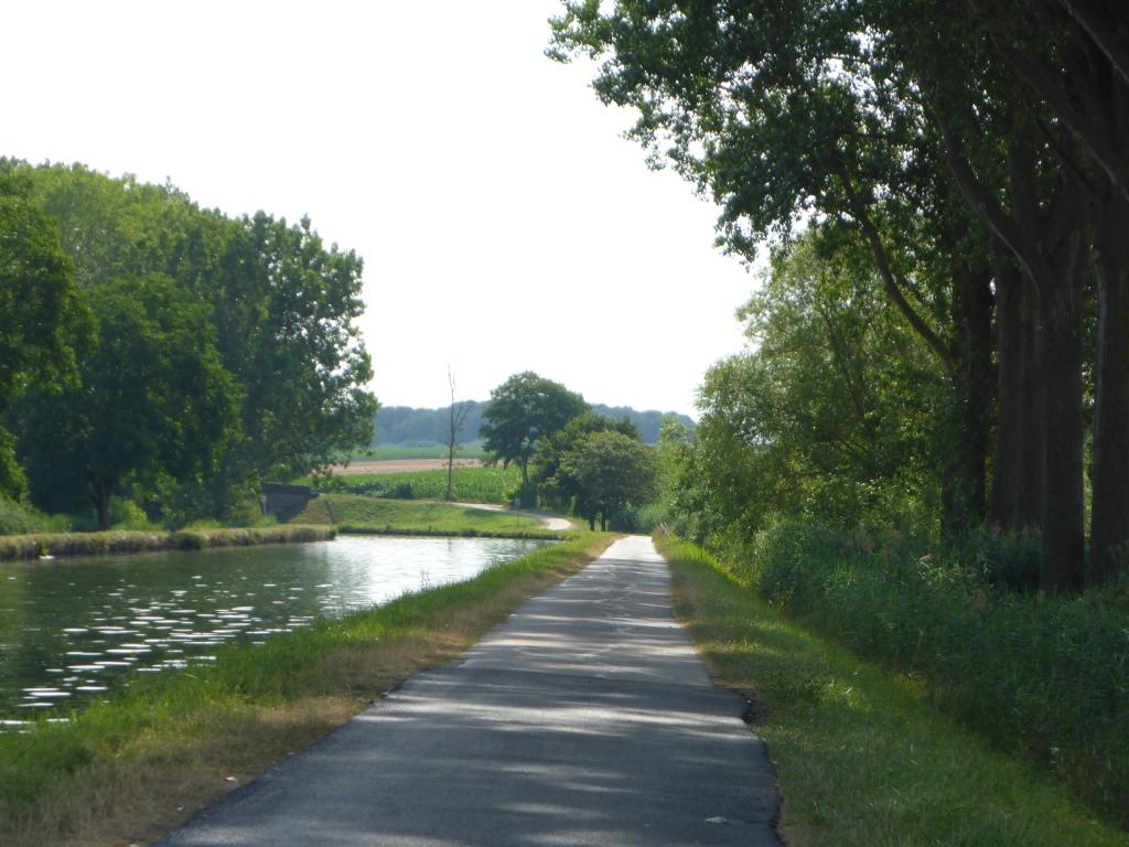 Radweg am Rhein-Marne-Kanal bei Ingenheim (Bild: Klaus Dapp)