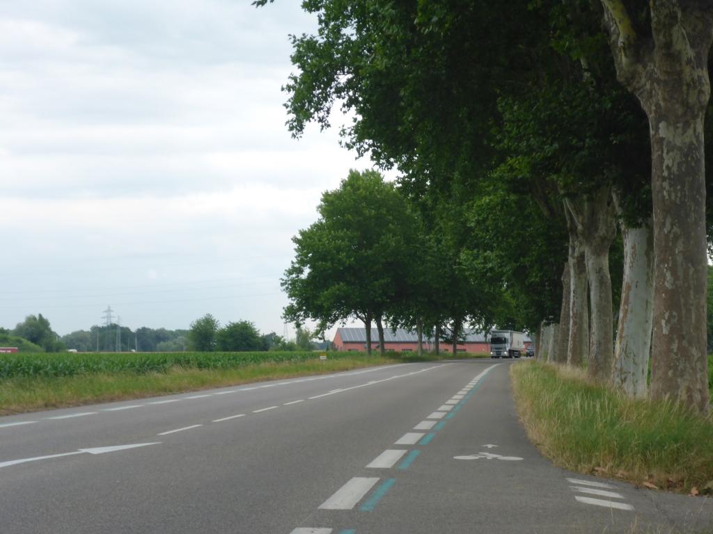 Schutzstreifen an der Departementsstraße zwischen Wantzenheim und Kilstett (Bild: Klaus Dapp)