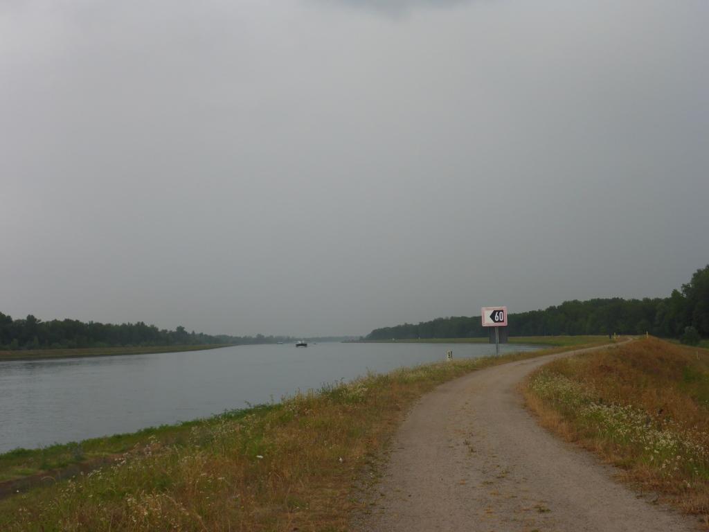 Rheinradweg bei Grauelsbaum (Bild: Klaus Dapp)
