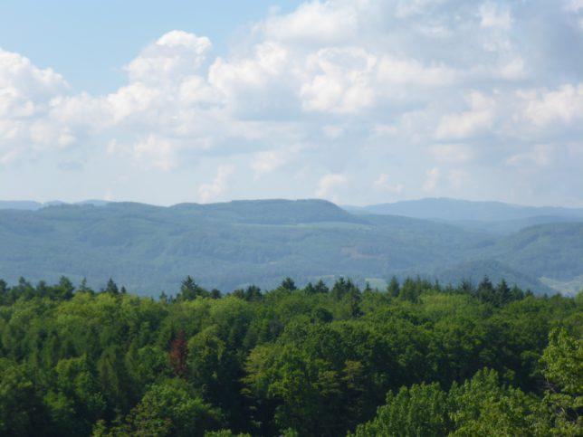 Blick von der St. Chrischona in Richtung Alpen (Bild: Klaus Dapp)