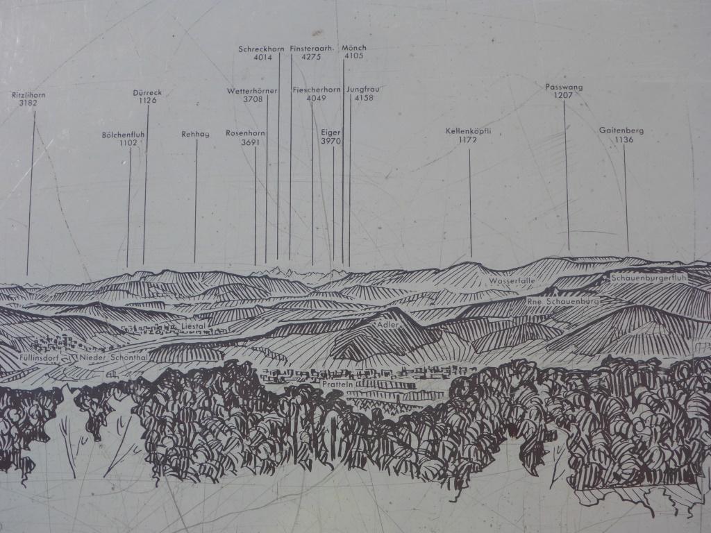 Schautafel über die Alpengipfel (Bild: Klaus Dapp)