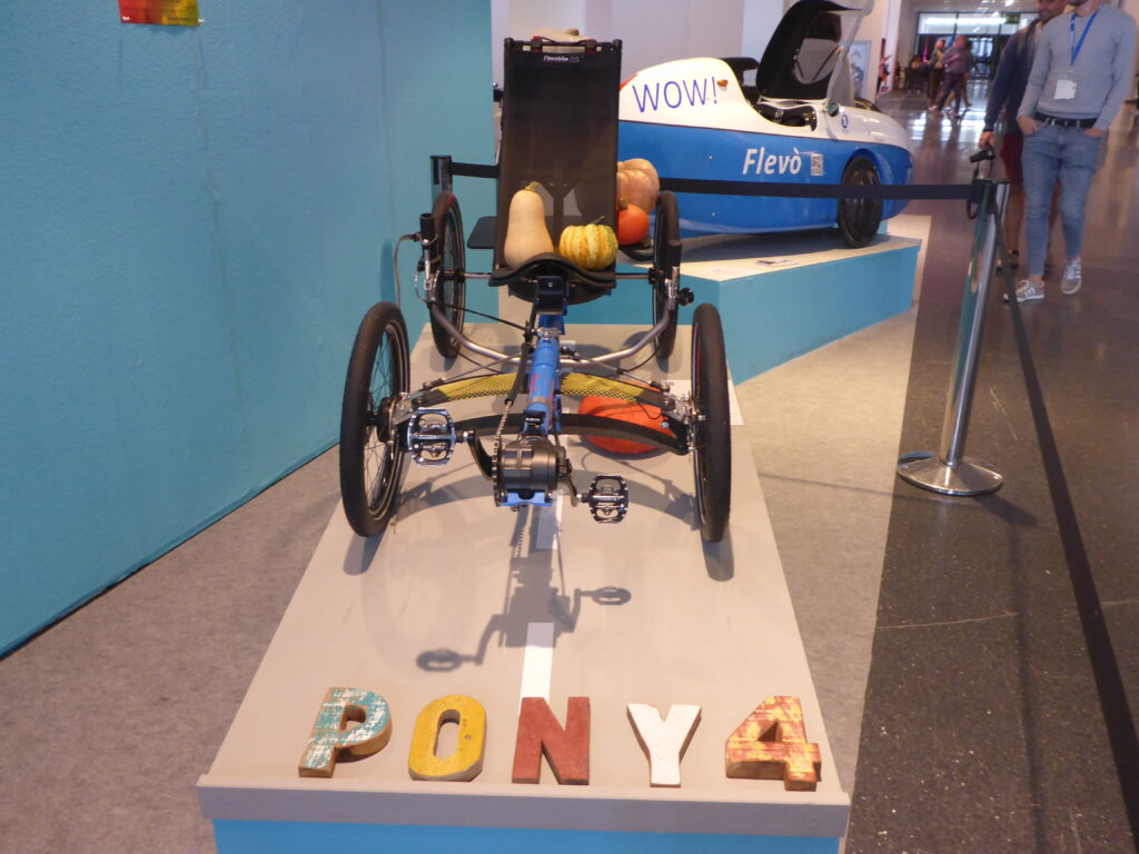 Pony4 Erlkönig (Bild: Klaus Dapp)