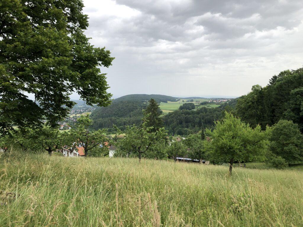 Blick in den Sundgau vom Burgberg in Burg (Schweiz - Bild: Klaus Dapp)