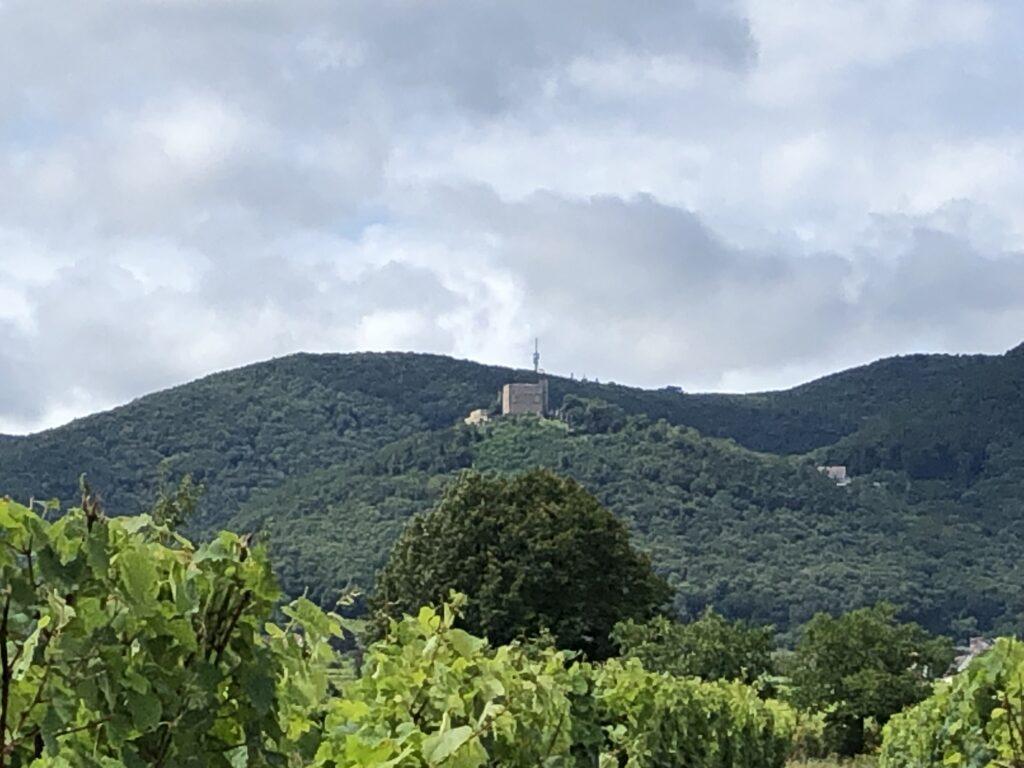 Hambacher Schloss bei Neustadt an der Weinstraße (Bild: Klaus Dapp)