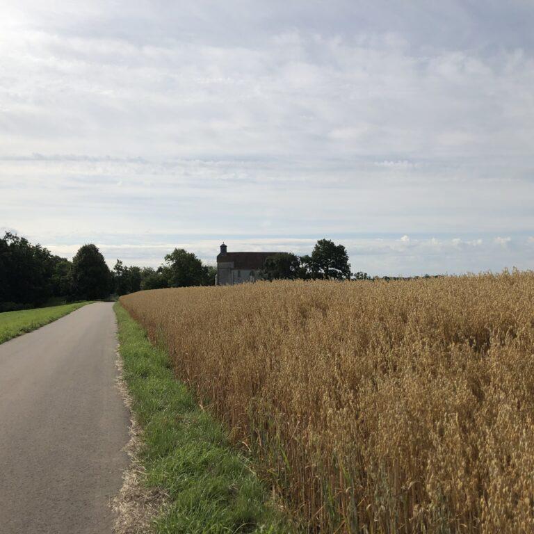 Kunigundenkapelle im  Auber Ortsteil Burgerroth (Bild: Klaus Dapp)