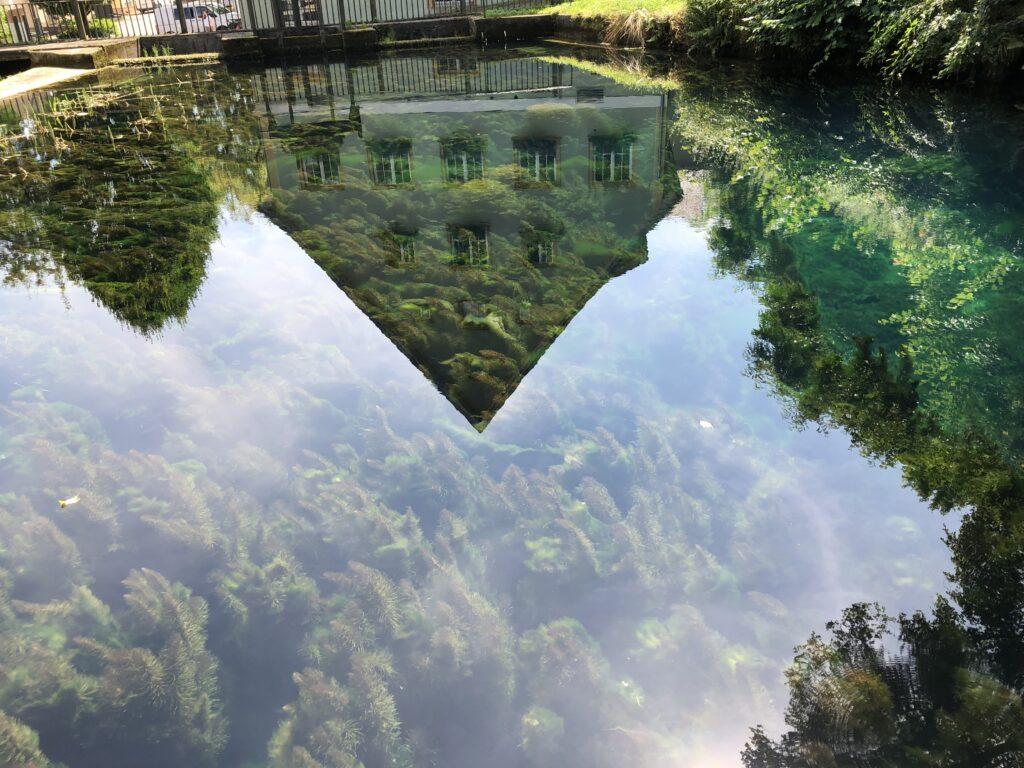 Spiegelung im Quelltopf der Brenz (Bild: Klaus Dapp)