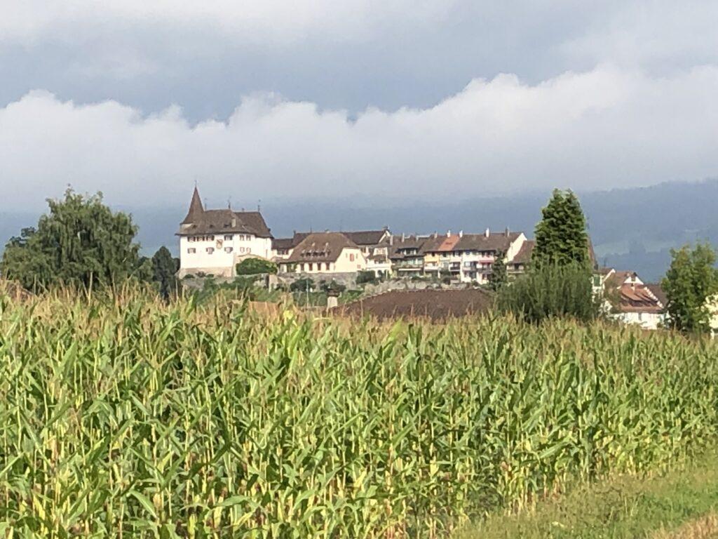 Schloss Erlach am Bieler See (Bild: Klaus Dapp)
