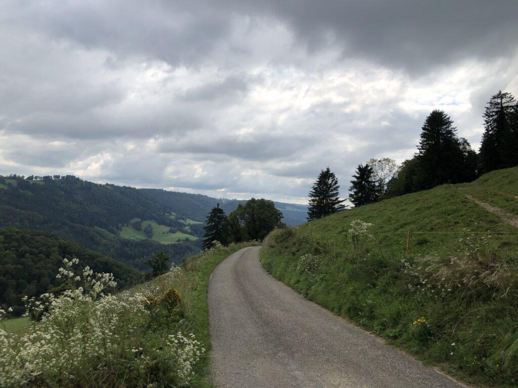 Fernblicke bei der Auffahrt zum Col de la Croix (Bild: Klaus Dapp)
