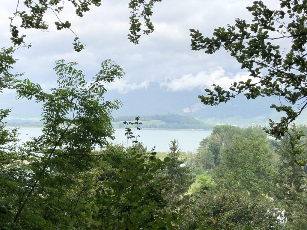 Morgendlicher Blick auf den Bieler See (Bild: Klaus Dapp)