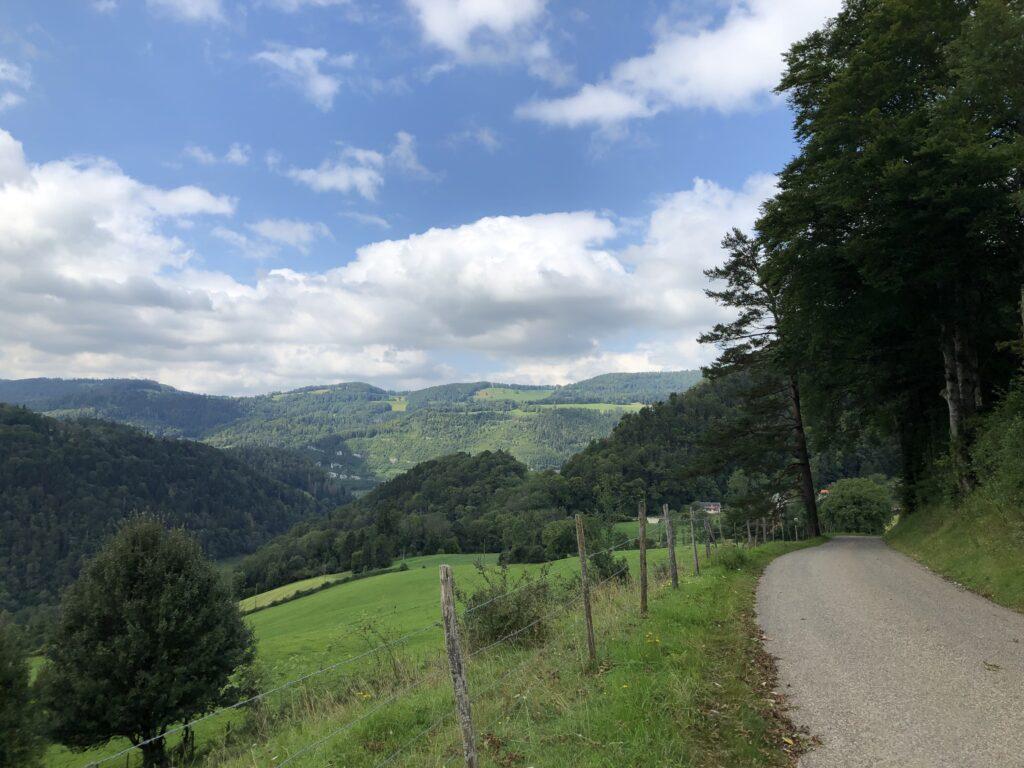 Blick in das Tal des Doubs (Bild: Klaus Dapp)