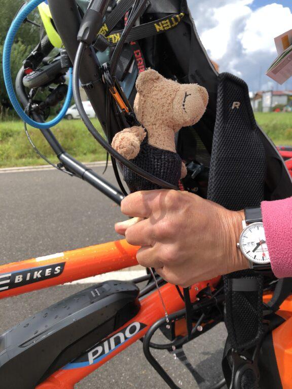 Der kleine Bär wird ausgedrückt, um ihn zu trocknen (Bild: Klaus Dapp)