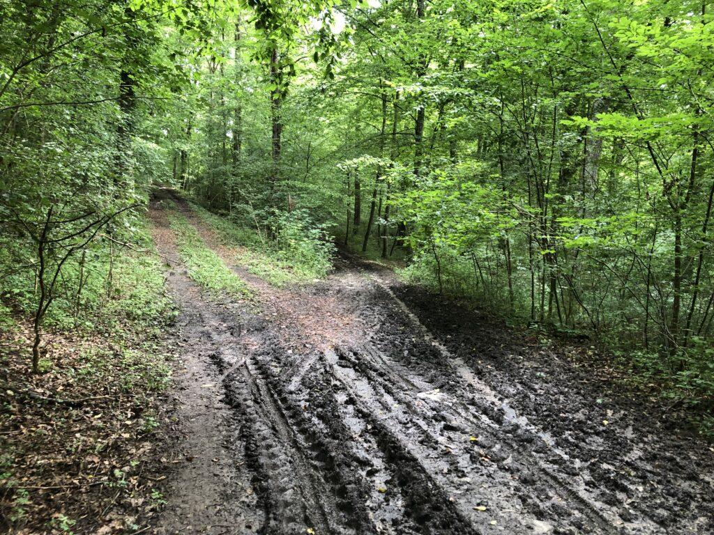 Wegempfehlung des Radroutenplaners Baden-Württemberg (Bild: Klaus Dapp)