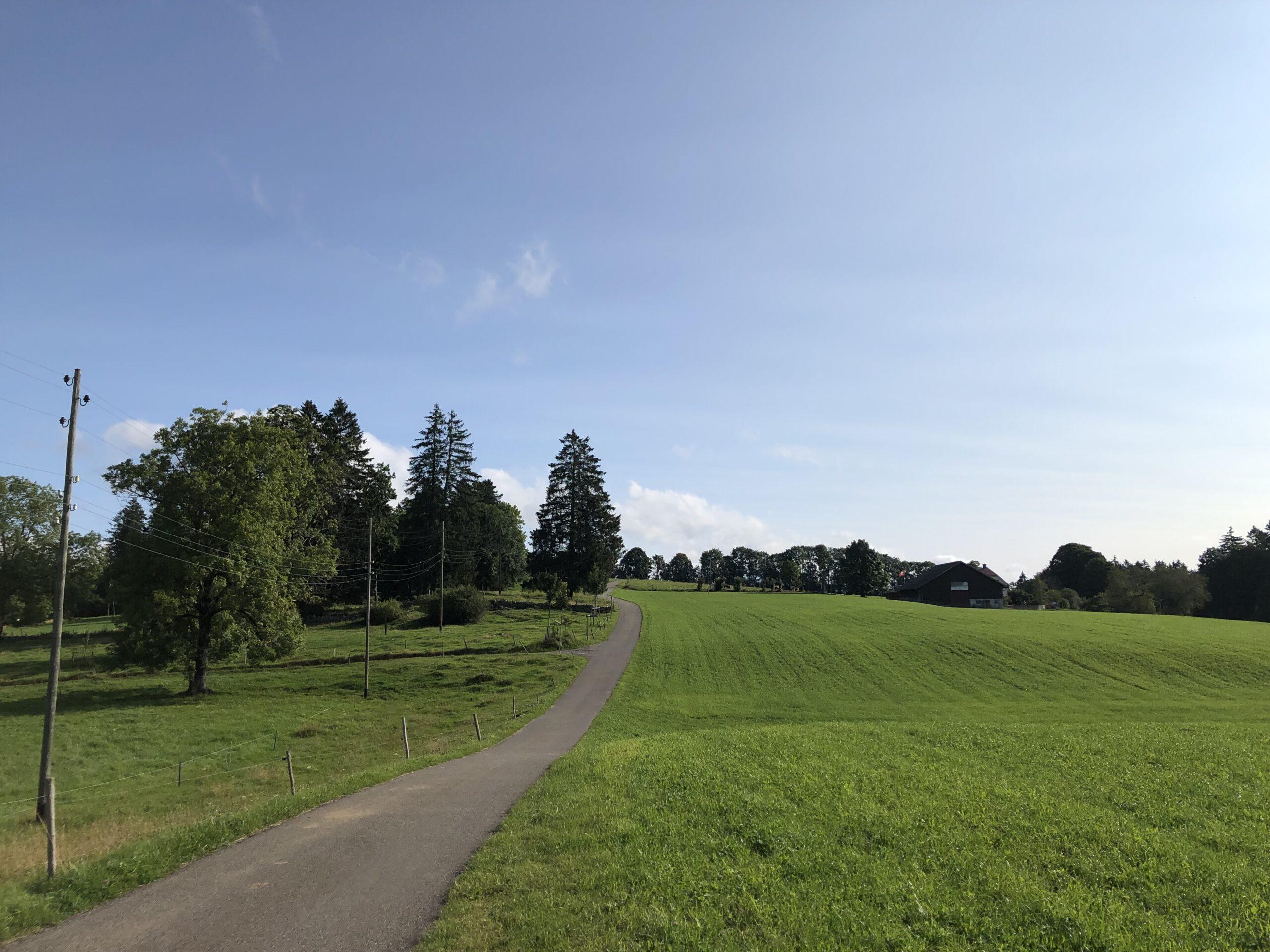 Blick in den Jura bei La Cibourg (Bild: Klaus Dapp)
