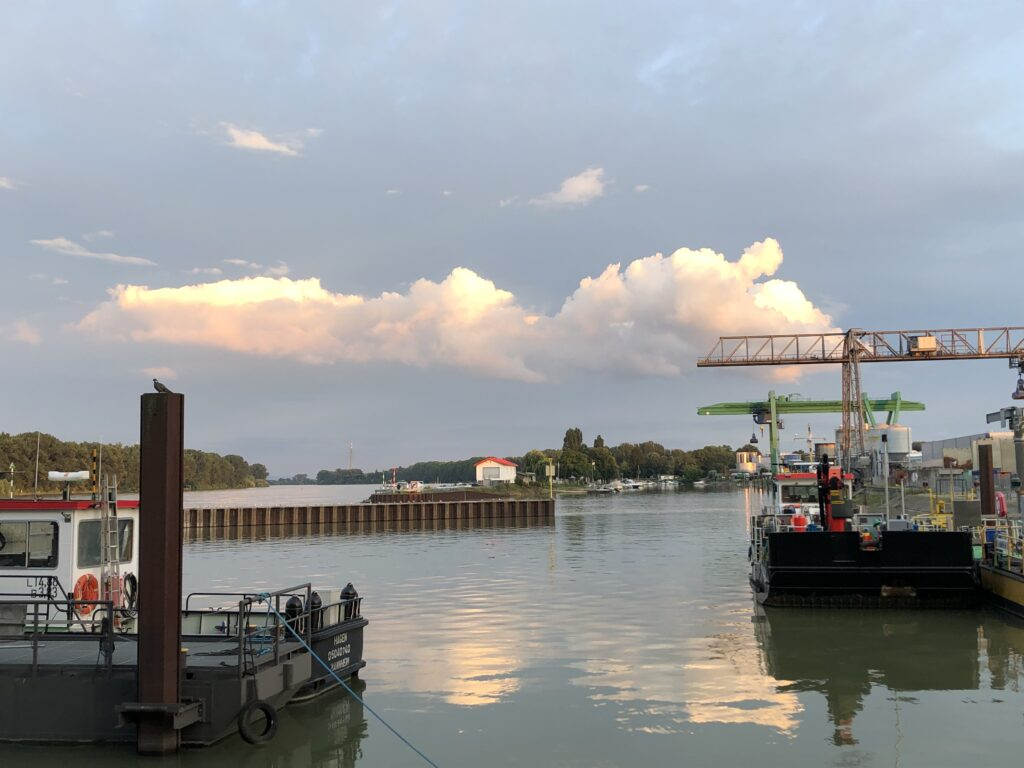 Sonnenuntergang am Rhein (Bild: Klaus Dapp)
