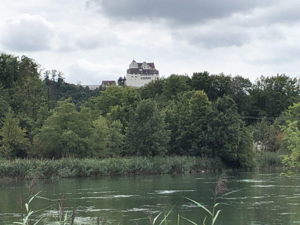Mittagessen mit Blick auf Schloss Wildegg (Bild: Klaus Dapp)