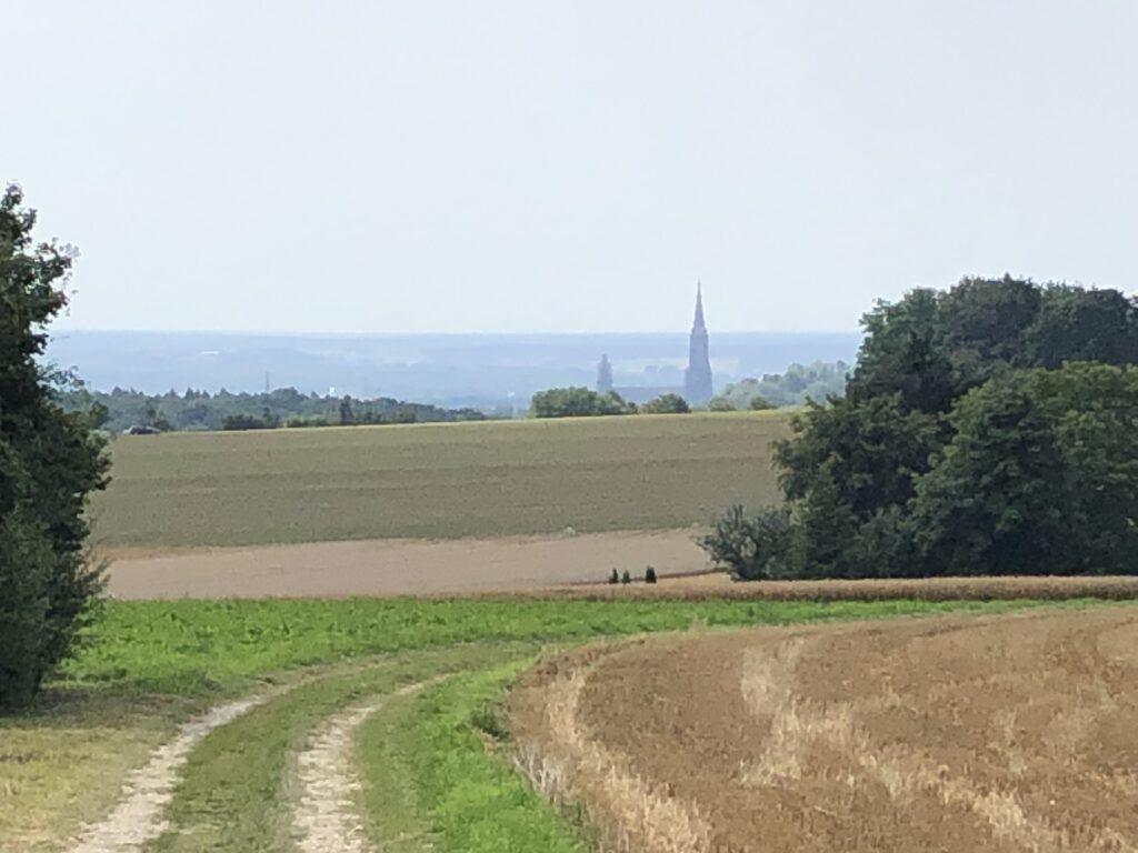 Der erste Blick auf das Ulmer Münster (Bild: Klaus Dapp)