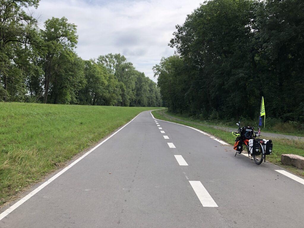Radweg auf dem Deichverteiligungsweg am Rhein (Bild: Klaus Dapp)